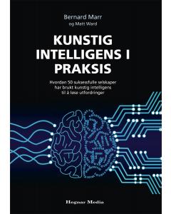 Kunstig intelligens i praksis